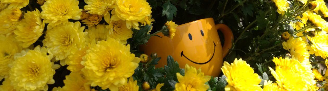 Glückstasse als Symbol für die Positive Psychologie