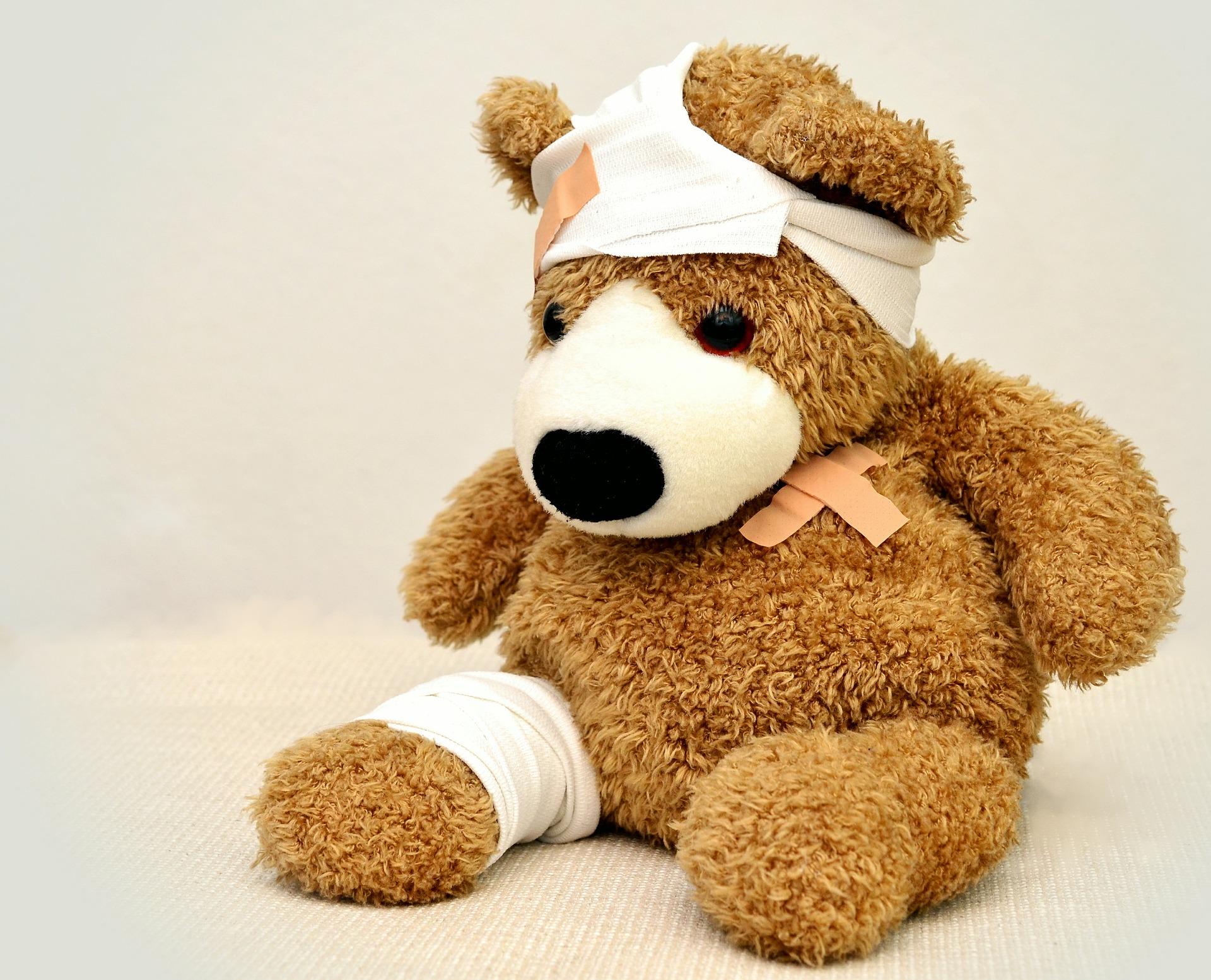 teddy-562960_1920-0exif
